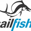 Sailfish logo.jpg