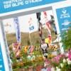 64-1-l-salino_2011-07-27_8406