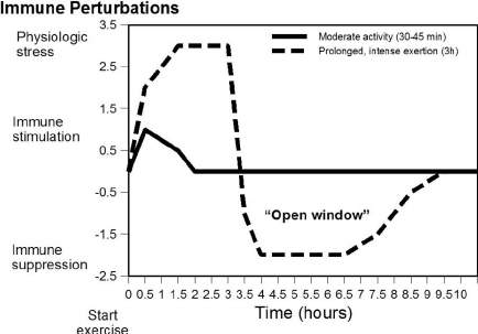 Figure-1-The-''open-window-theory''-Moderate-exercise-causes-mild-immune-changes-in