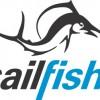 Sailfish logo.jpg