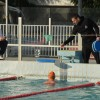 Triathlon Coaching Swimming